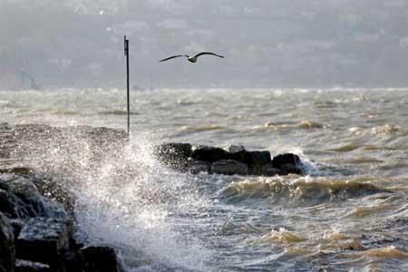 وزش باد نسبتا شدید و مواج شدن دریای خزر