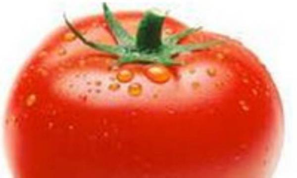 گوجه فرنگی، قلب سبزی هاست